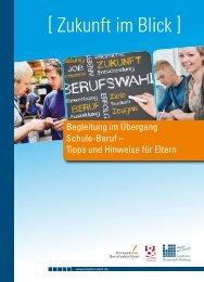 Flyer: Begleitung im Übergang Schule-Beruf - Perspektive ...