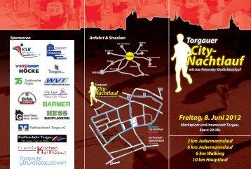 City- Nachtlauf - Torgau