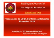 Wellington Provincial - United Fire Brigades' Association