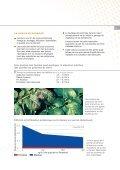 Fertilisation des pommes de terre - K+S KALI GmbH - Page 5