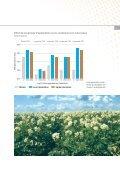 Fertilisation des pommes de terre - K+S KALI GmbH - Page 7