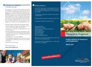 Stadt Halle (Westf.): Flyer Förderprogramm Klimaschutz