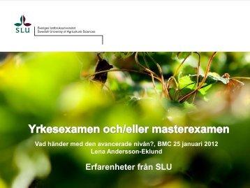Yrkesexamen och/eller masterexamen (pdf, nytt fönster)