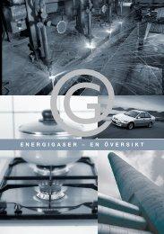ENERGIGASER – EN ÖVERSIKT - SGC
