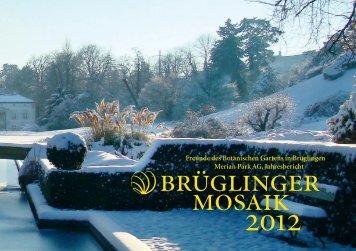 Brüglinger Mosaik 2012