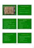 Apresentação do PowerPoint - Unesp - Page 3