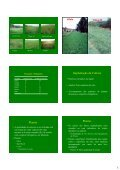 Apresentação do PowerPoint - Unesp - Page 5