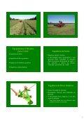 Apresentação do PowerPoint - Unesp - Page 7