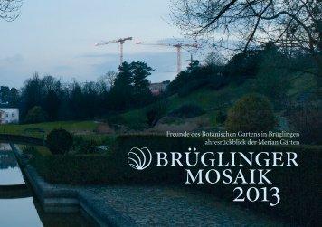 Brüglinger Mosaik 2013
