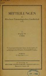 nchner Entomologischen Gesellschaft Vol 57-59 ... - Google Drive