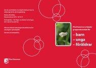 Barn och föräldrastöd (pdf, 295kB, nytt fönster) - Piteå kommun