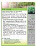 G_apskats_2013_2 - Page 4