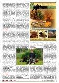Reuttener 08/13 - Kaufmannschaft Reutte - Seite 5