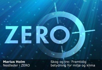 Marius Holm Nestleder i ZERO Skog og tre: Framtidig betydning for ...