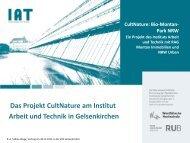 PDF-Download - beim Institut Arbeit und Technik