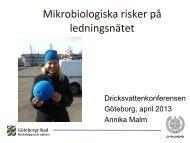 Mikrobiologiska risker på ledningsnätet - Svenskt Vatten
