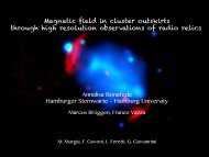 Radio relics and magnetic field: a high resolution view