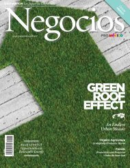 GREEN ROOF EFFECT - ProMéxico