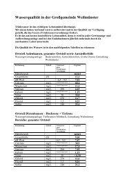 Aufstellung 2008 Wasserqualitaet in der Grossgemei - Weilmünster