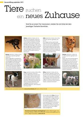 Tiervermittlung September 2011 - STADTmagazin