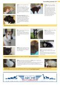 Tiervermittlung September 2011 - STADTmagazin - Page 2