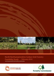 Select here to download the Carbon Sink Forestry Feasibility Study