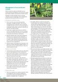 Aphid-transmitted viruses in vegetable crops - Page 3