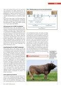 CHbraunvieh 06-2013 [7.39 MB] - Schweizer Braunviehzuchtverband - Page 5