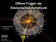 Offene Fragen der Elementarteilchenphysik