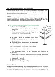 sprosse Naturwissenschaftliche Sachverhalte ... - ITB Consulting