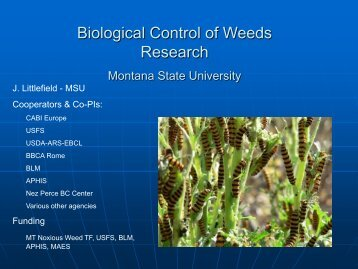 presentation - Center for Invasive Plant Management