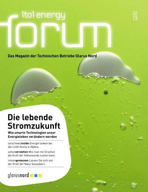 1to1 energy forum 2/2013 - Technische Betriebe Glarus Nord