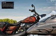 Color Shop Section - 2.2MB (PDF) - Harley-Davidson