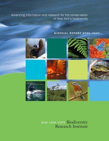 BRI Biennial Report 2006 - New York State Museum