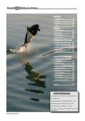 Lage- und Tiefenregler - Modell-Uboot-Spezialitäten - Seite 2