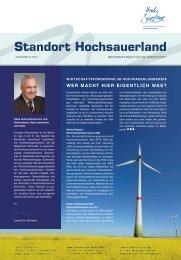Newsletter 1/2011 - Wirtschaftsförderungsgesellschaft ...