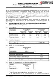 Netznutzungsentgelte Strom (gültig ab 01.01.2009 - Umsetzung ...