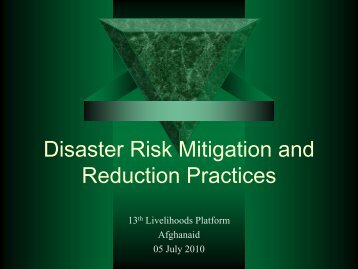 Disaster Risk Mitigation and Reduction Practices