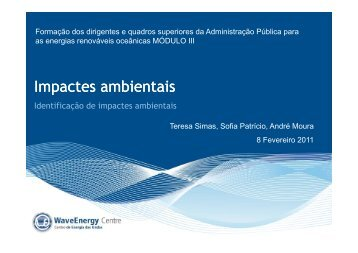 Impactes ambientais - WavEC