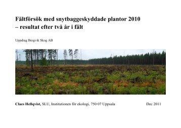 Fältförsök med snytbaggeskyddade plantor 2010 – resultat ... - SLU
