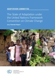 Adaptation Report - United Nations Framework Convention on ...