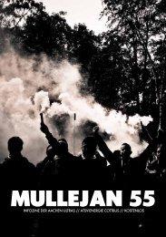 Ausgabe 55 - Aachen Ultras