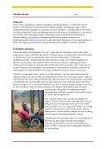 Friluftsliv for alle -en eksempelsamling - Universell utforming Finnmark - Page 5