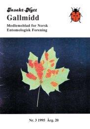 Gallmidd - Norsk entomologisk forening