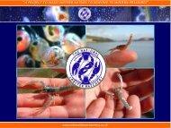 National Aquarium Workshop. Scotland, UK. 17 th November.