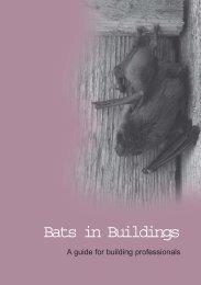 Bats in Buildings - Scottish Natural Heritage