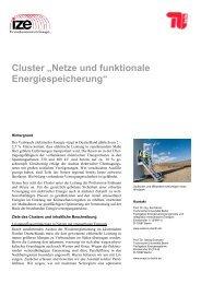 Netze und funktionale Energiespeicherung - TU Berlin