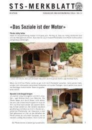 Das Soziale ist der Motor - Schweizer Tierschutz STS