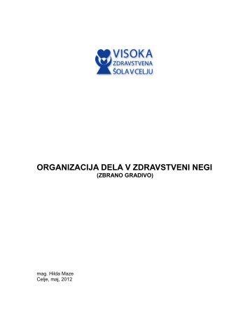 ORGANIZACIJA DELA V ZDRAVSTVENI NEGI - Visoka zdravstvena ...