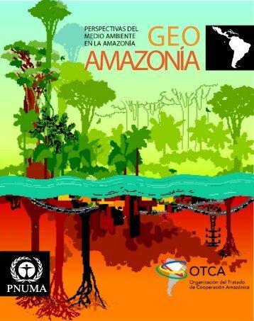 GEO amazOnia - Programa de Naciones Unidas para el Medio ...